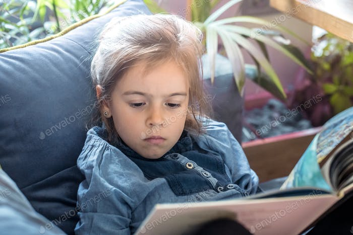 Little girl is reading a book in the living room on the couch