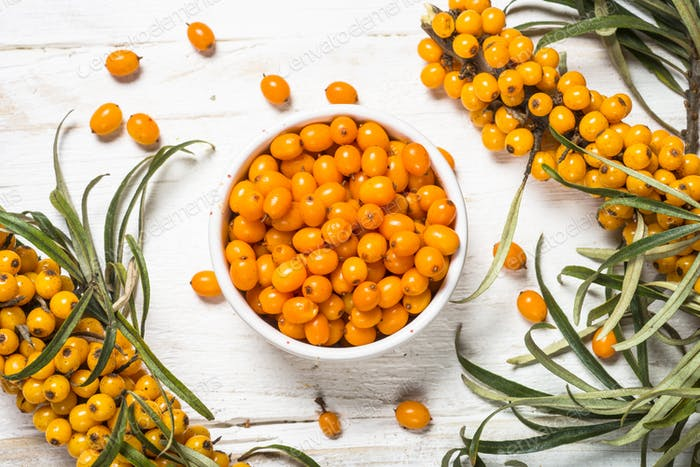 Sea buckthorn berries with leaves
