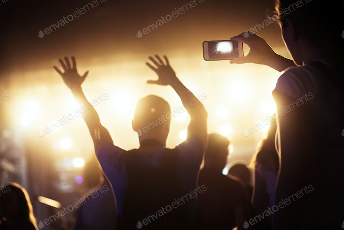 Picture of party people at music festival
