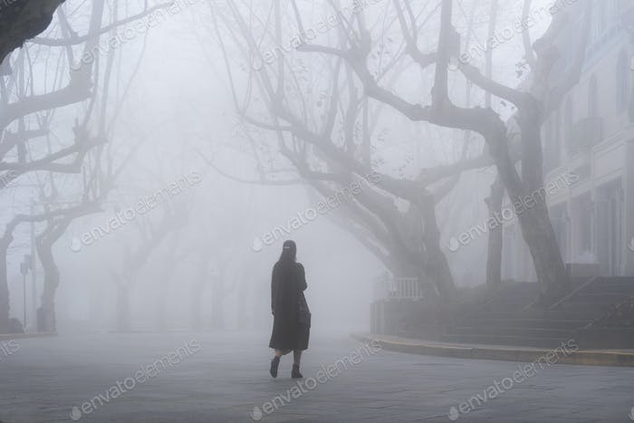 lushan mountain landscape of street in fog