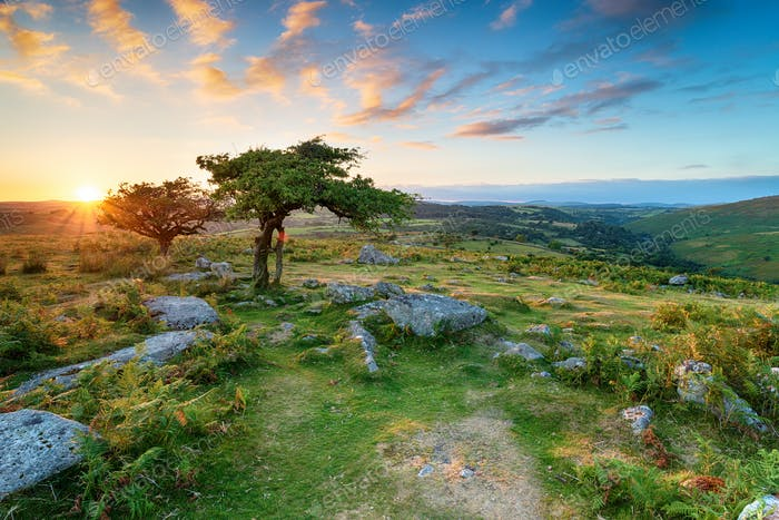 Dartmoor-Nationalpark