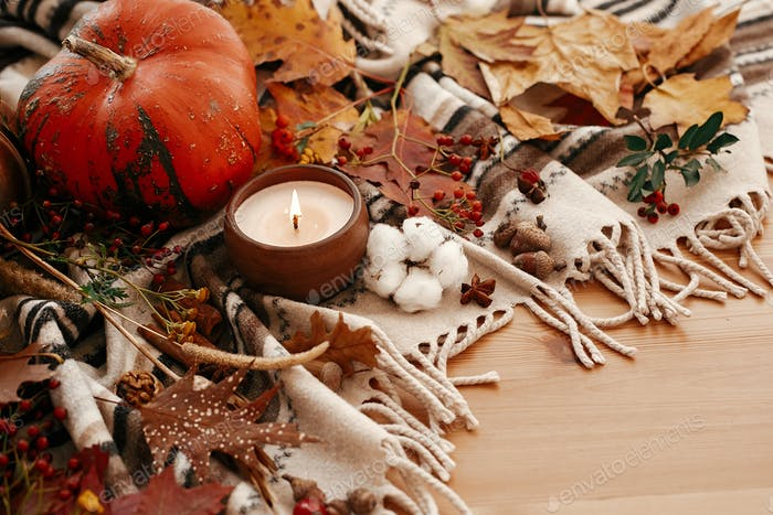 Pumpkin and candle with berries, fall leaves, anise,herbs,