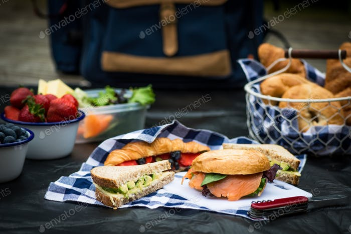 Picnic setting with different sandwiches and berries