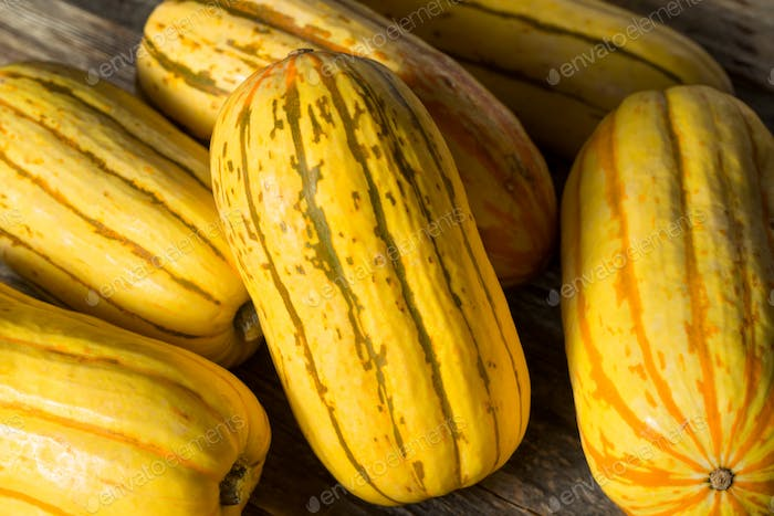Raw yellow Organic Delicata Squash