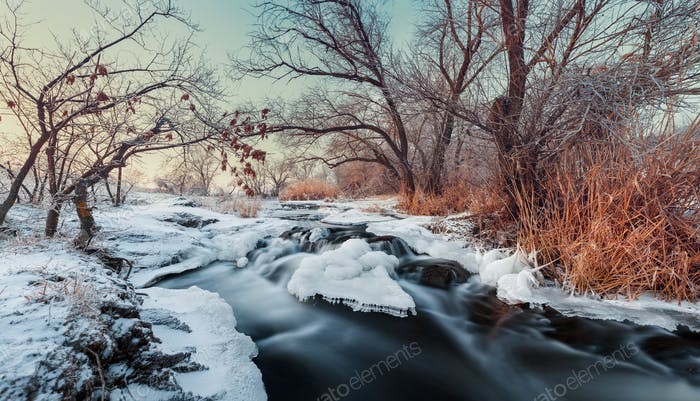 Beautiful winter sunset at the river Krinka. Plants, trees and b