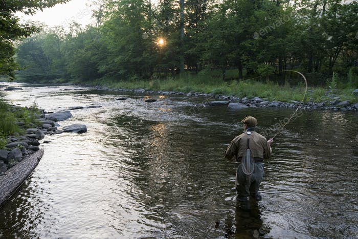 A fly fisherman casting for trout in a small freestone river in northeastern USA.