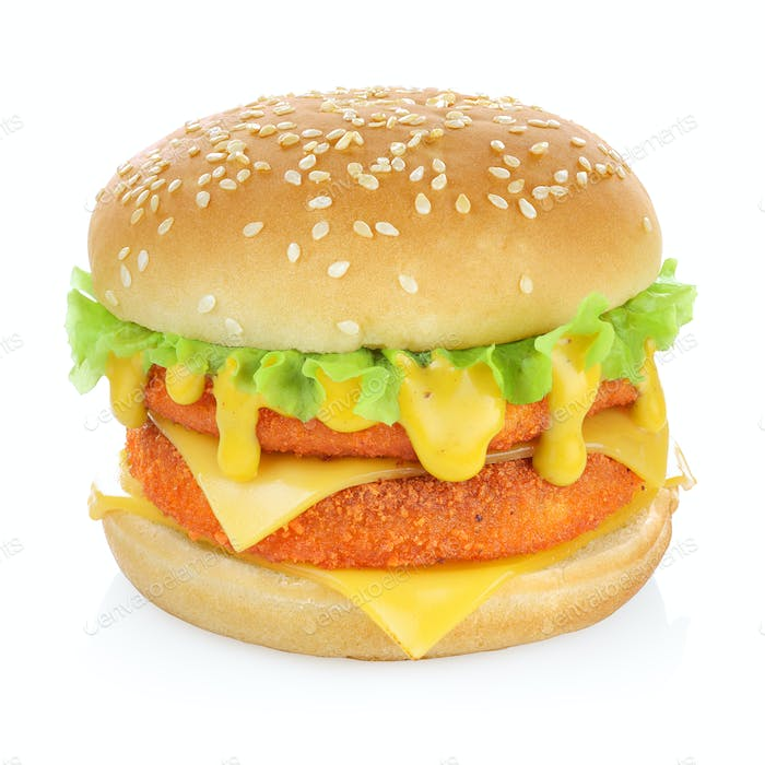 Fish burger isolated
