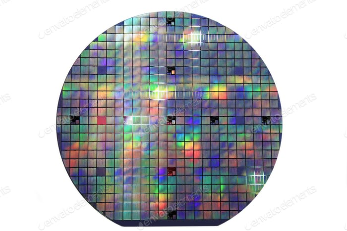 silicon disk with chips