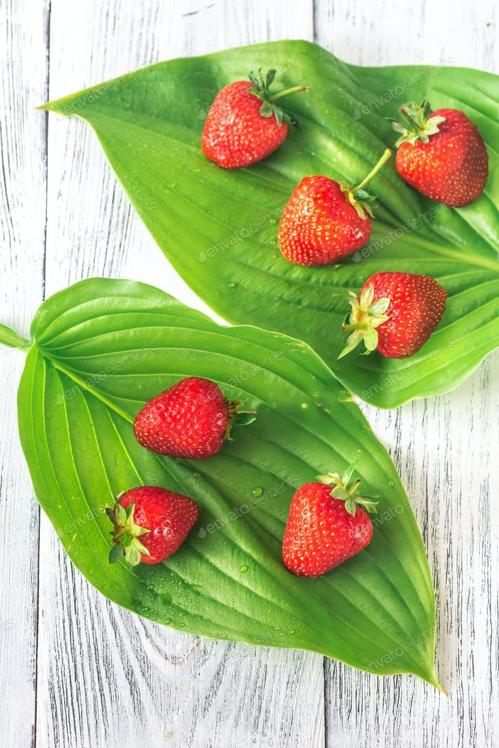 Fresh strawberries on green leaves