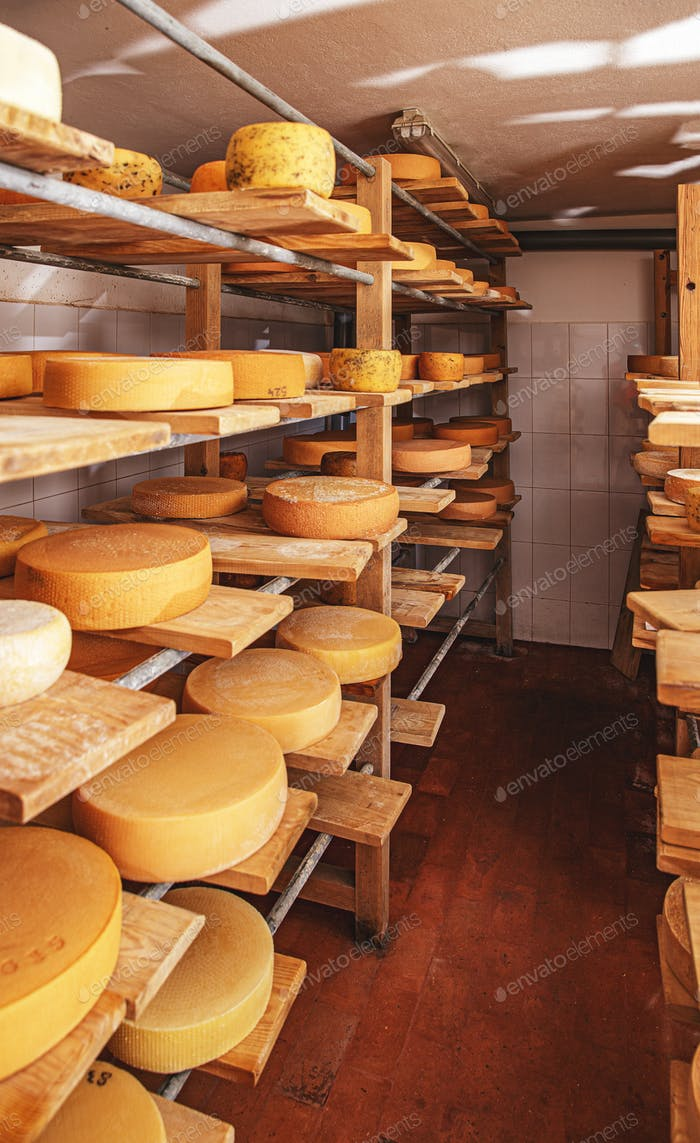 Row of aging cheese