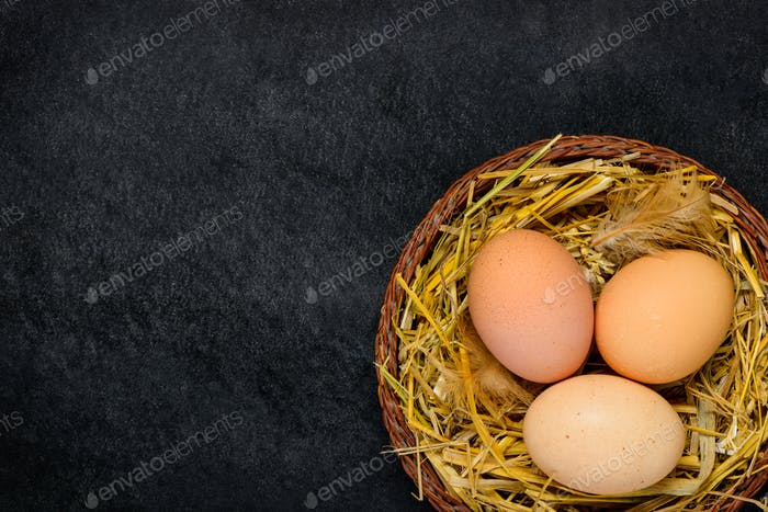 Organic Eggs with Copy Space Area