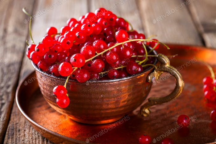 Fresh Red Currant .Food or Healthy diet concept.