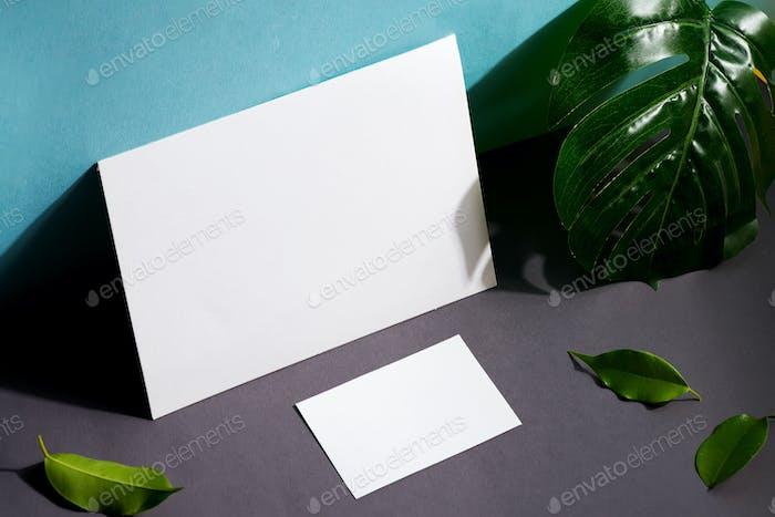 Leere Briefpapier-Set Visitenkarten und Broschüre auf Duotone-Hintergrund mit Blatt und Schatten