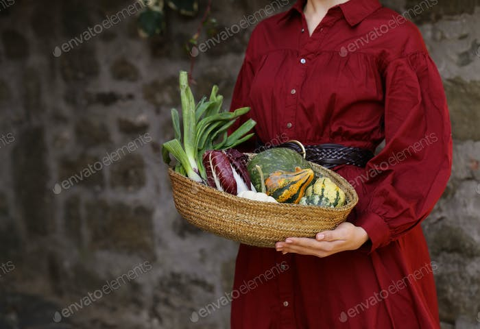 Autumn Vegetables Harvest