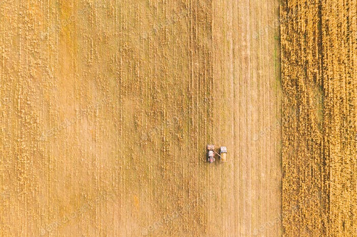 Aerial View Of Rural Landscape. Combine Harvester And Truck Working Together In Field, Collects