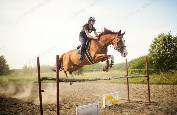Jockey Mujer joven en caballo saltando sobre obstáculo
