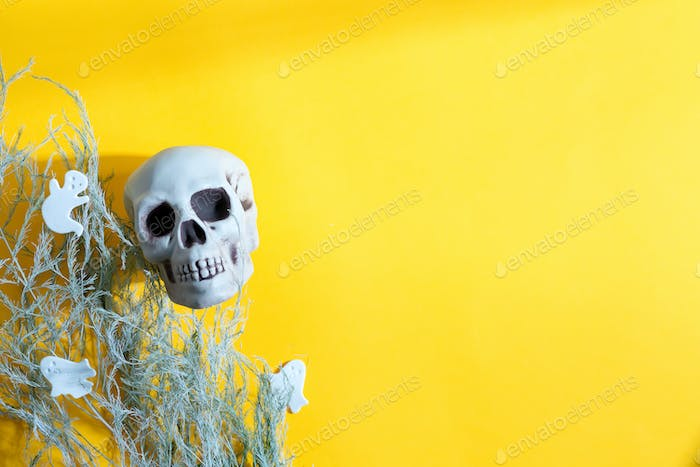 Halloween card with human skull, dry plant and cut ghosts