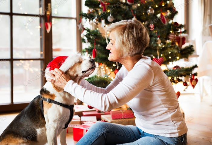 Senior woman with her dog at the Christmas tree.