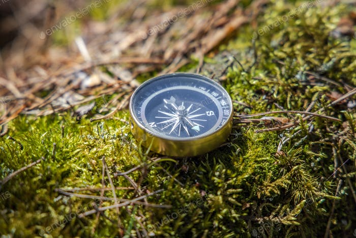 Traveller compass on the grass in the forest