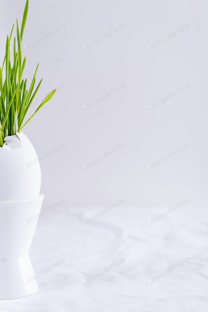 Holiday Easter card with green grass in eggshell on a ceramic cup on a table against light grey