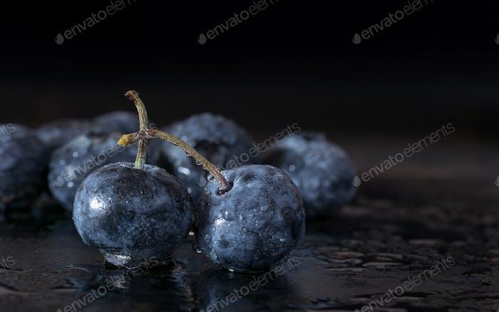 Fresh Blueberries on a Dark Background
