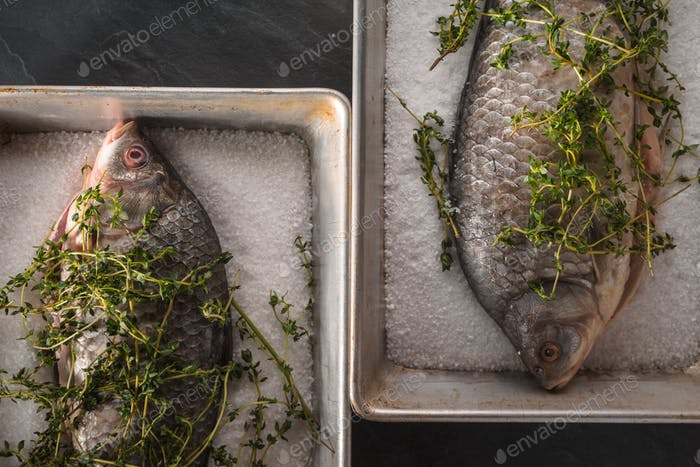 Two raw crucians with salt and rosemary in the baking dishes top view