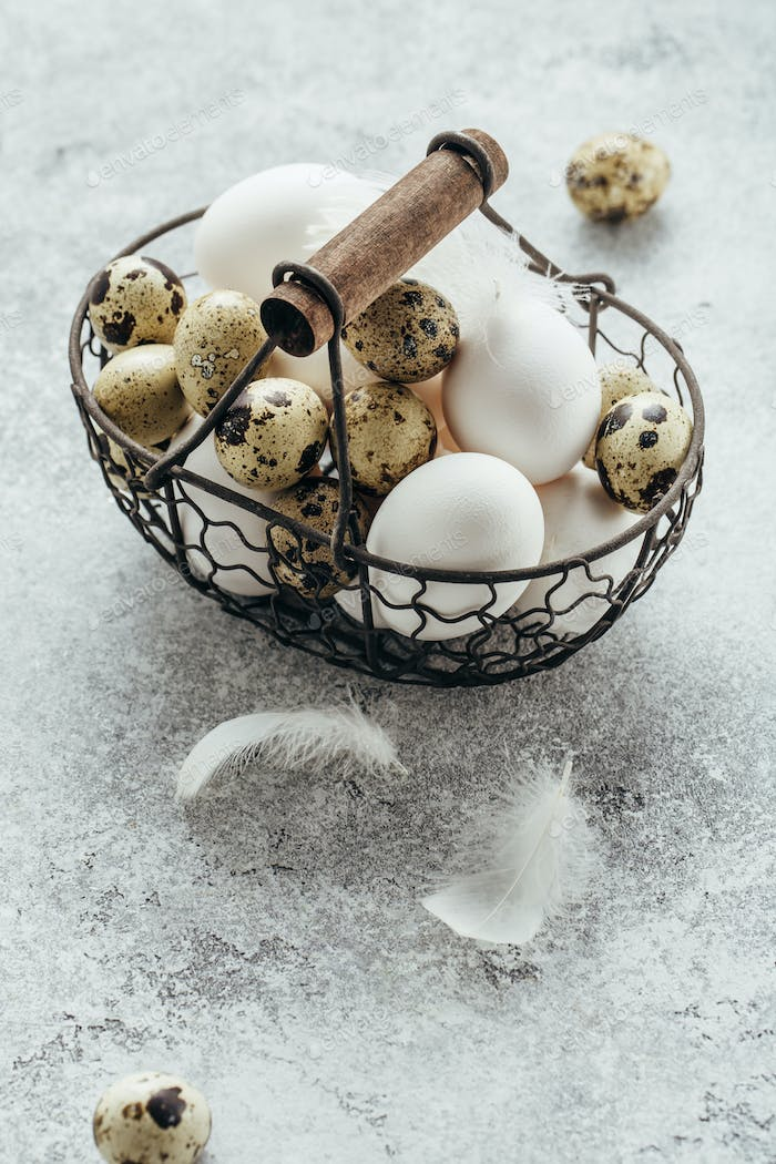 Fresh farm Quail and chicken eggs in a basket
