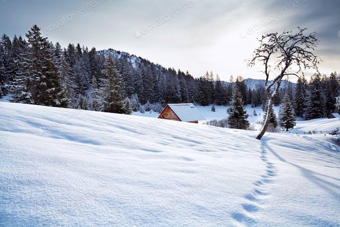 snowy hills in Allaguer Alps