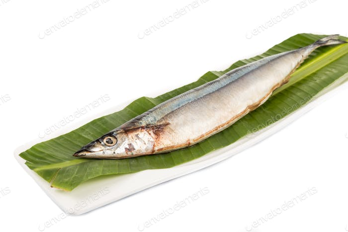 Fresh Japanese Sanma fish on leaf