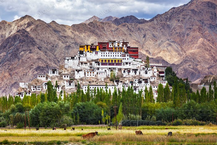Thiksey gompa, Ladakh, Indien
