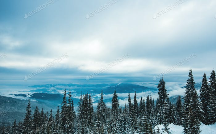 View of the high snow-capped mountains