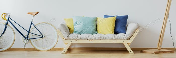 Minimalistic living room interior