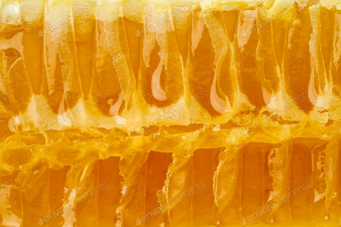 bee honeycomb closeup, fresh stringy dripping sweet honey, macro background