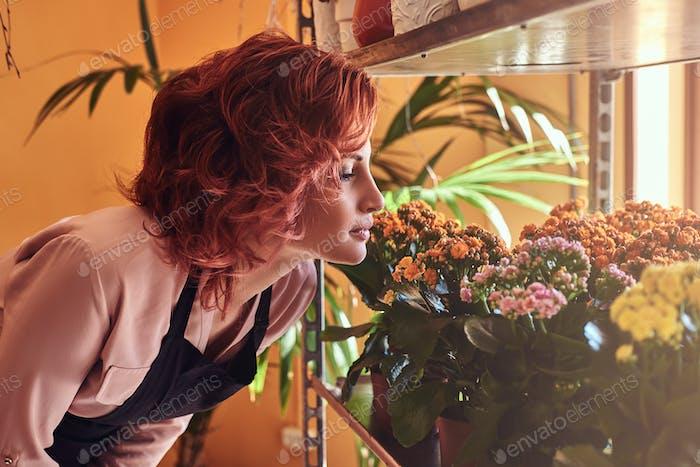 Porträt einer sinnlichen weiblichen Floristin, atmet einen angenehmen Geruch von frischen Blumen.