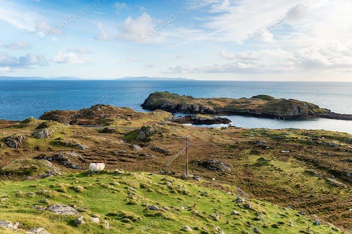 The Rodel Coast on the Isle of Harris