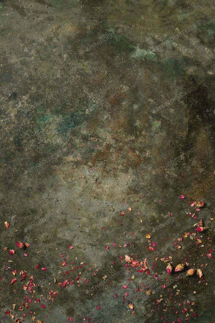 Background with dry rose buds