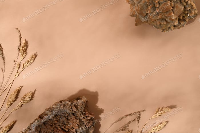 Beige background with stones and dry branches