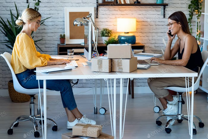 две красивые внештатные деловые женщины продавец, работающие с компьютером