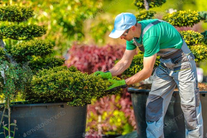 Garden Store Job