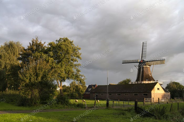 Windmill Feanster Moune