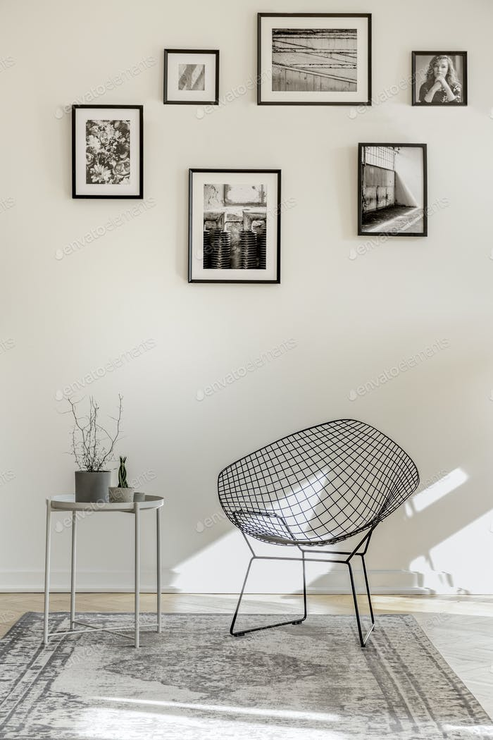 Gallery of black and white photos on empty wall of spacious living room interior