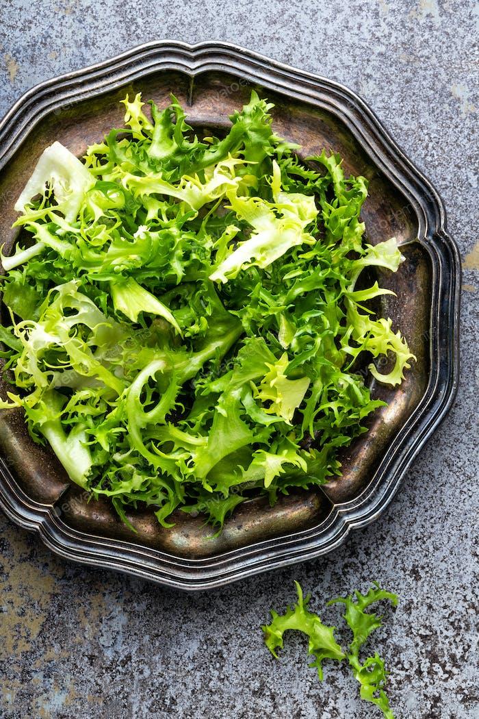 Frize Salatsalat, frischer Frisee. Gesundes vegetarisches Essen