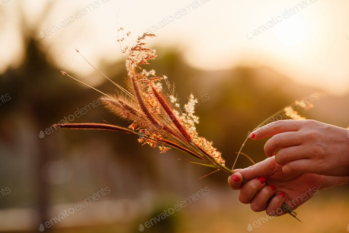 Mädchen machen Wildblumenstrauß