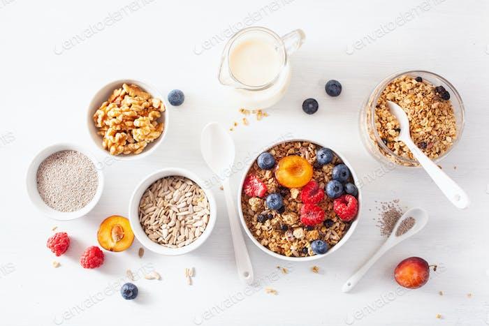 gesundes Müsli zum Frühstück mit Beerenfrucht-Nuss, Pflanzenmilch