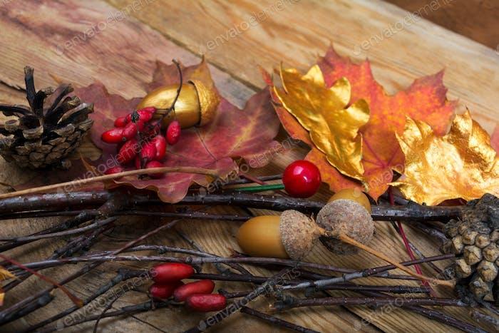 Thanksgiving Hintergrund mit Eicheln, goldenen und bunten Ahorn l