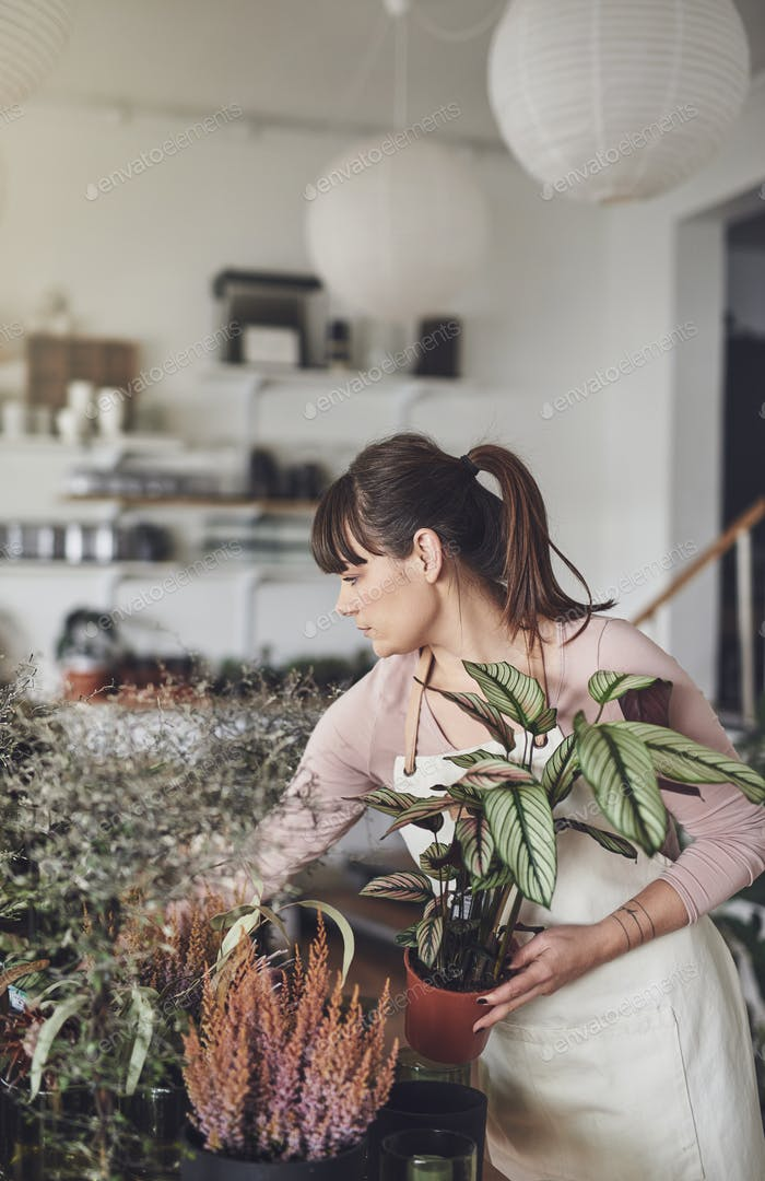 Young female florist busy working in her flower shop