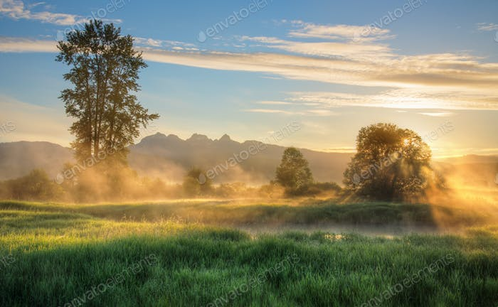 Yellow Mist At Sunrise with Background Mountains