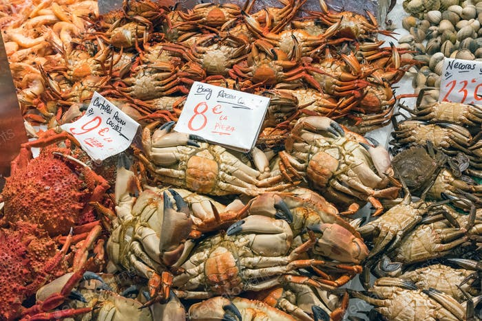 Crabs and other crustaceans for sale
