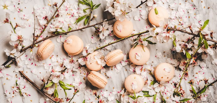 Flat-lay of sweet macaron cookies and blossom flowers, wide composition