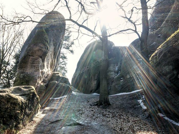 White Elephant Rocks in backlight